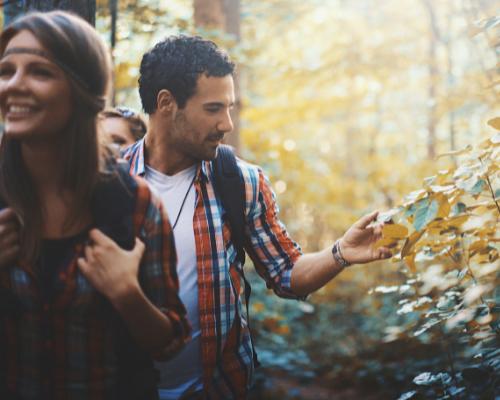 Über Stock und Stein – Wie du deine Wanderung umweltfreundlich gestaltest